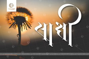 Paid Calligraphy Software – Hindi Typing